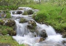 Fluss Clan