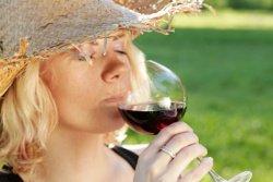 Das Burgund ist welbekannt für seine Weine.