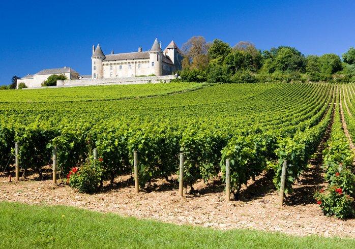 eine Landschaft geprägt von alten Burgen und Schlössern inmitten von Weinanbaugebieten