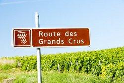 Wandern Sie entlang der Route des Grands Crus