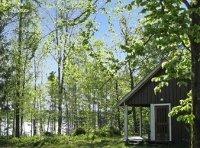 Zweeds vakantiehuis in het bos