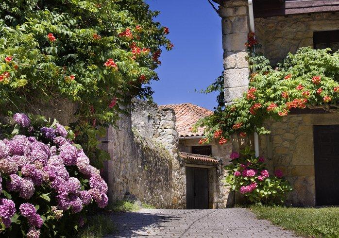 Blossoming Asturias