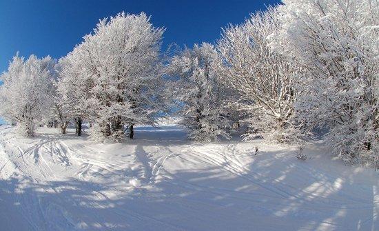 Heerlijke winter