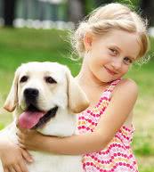 Vacaciones con perro en un apartamento donde se acepten perros o en una casa de vacaciones en Francia.