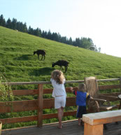 Le « Friesenhof », où se trouve un appartement pour quatre personnes idéal pour des vacances en famille, est situé près de Sulzberg dans la forêt de Bregenz.