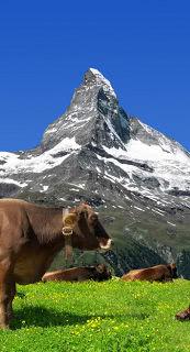 Ferienhausurlaub in der Schweiz