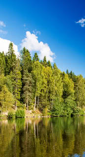 Ferienhausurlaub in Finnland