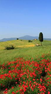 Ferienhausurlaub in Italien
