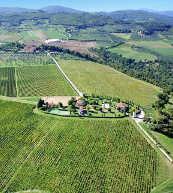 Von Weinreben umgebene Ferienresidenz in der Toskana.