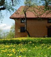 Dieses Bauernhaus in Vorarlberg bietet bis zu neun Urlaubern ausreichend Platz.